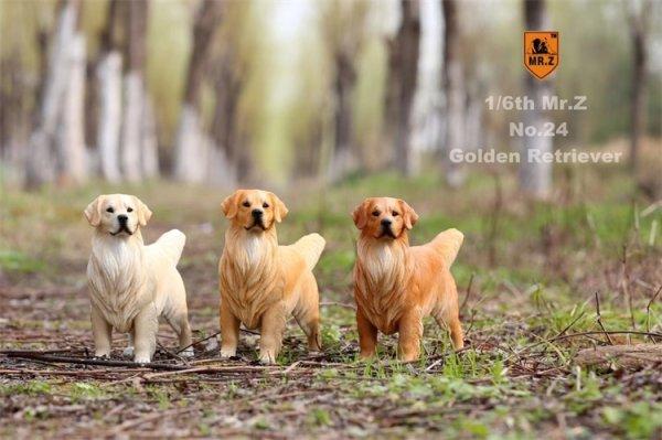 画像1: Mr.Z 1/6 ゴールデンレトリバー スタチュー 3種 カラー選べます 動物 置物 フィギュア (1)
